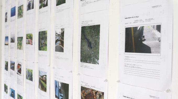 【滋賀県立美術館リニューアルオープン記念展「Soft Territory かかわりのあわい」関連イベント オンラインWS 】「今日の一枚」を募集しています!